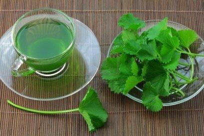 Công dụng chữa bệnh và làm đẹp bất ngờ từ rau má 1