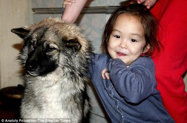 Sự phục hồi kỳ diệu của cô bé 4 tuổi ở 12 đêm trong rừng già Siberia 6