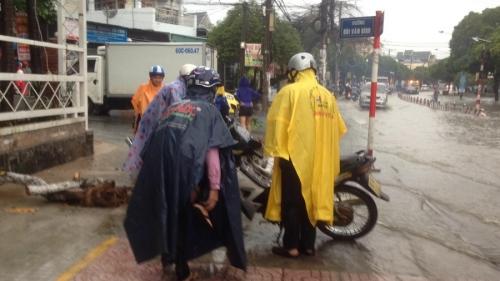 Video: Mưa ngập, dân
