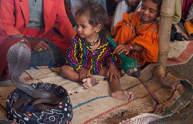 Khám phá bộ tộc Ấn Độ có biệt tài thôi miên rắn 10