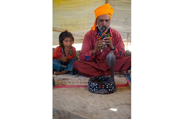 Khám phá bộ tộc Ấn Độ có biệt tài thôi miên rắn 3