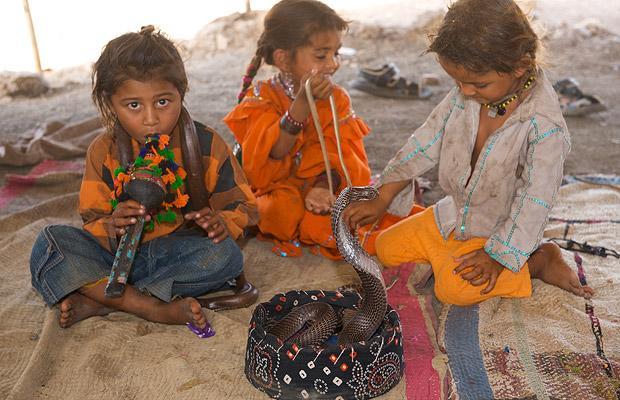 Khám phá bộ tộc Ấn Độ có biệt tài thôi miên rắn 4