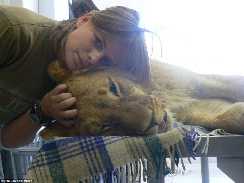 Thiếu nữ thản nhiên ôm sư tử ngủ mỗi đêm 2