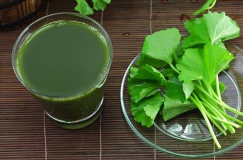 Những lưu ý cần biết khi sử dụng rau má 1