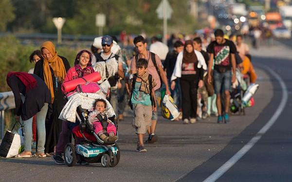 Dân Áo mang nước, thức ăn chào đón người nhập cư 1