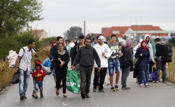 Dân Áo mang nước, thức ăn chào đón người nhập cư 2
