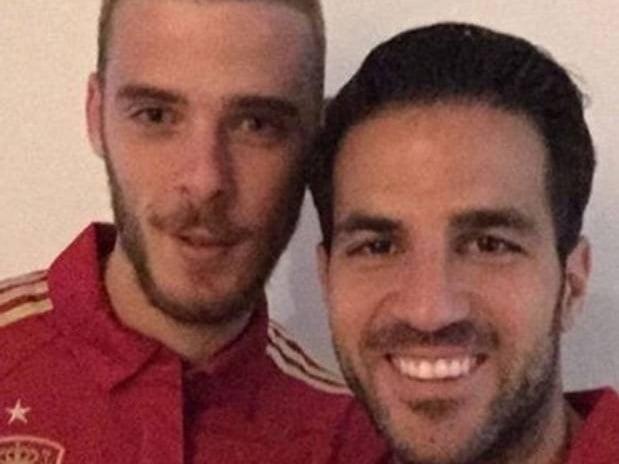 Fabregas phủ nhận việc không thèm nhìn mặt De Gea 1