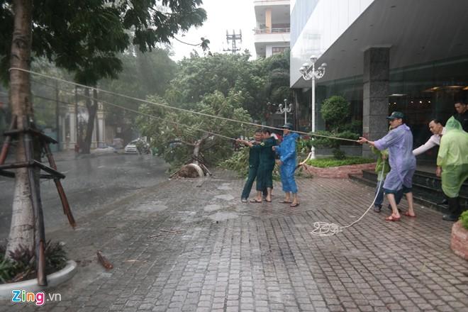 Miền Trung đang căng mình chống bão số 3 6