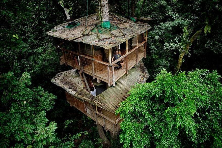 Hình ảnh Những ngôi nhà trên cây đẹp không thể tin nổi số 1