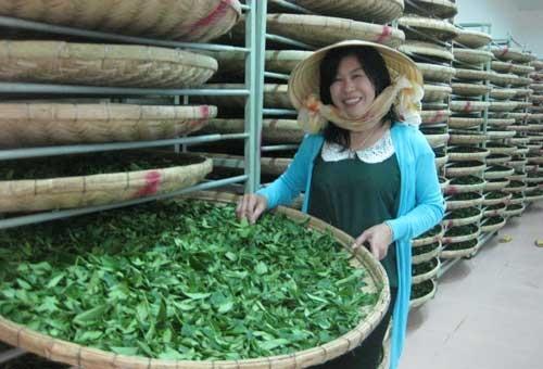 Sự nghiệp nữ đại gia Việt Nam đột tử ở Trung Quốc 1
