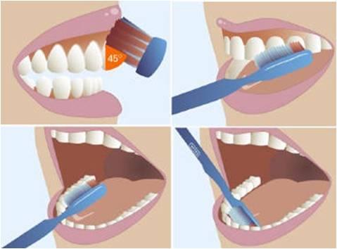 Đánh răng và những sai lầm nhiều người mắc phải 2