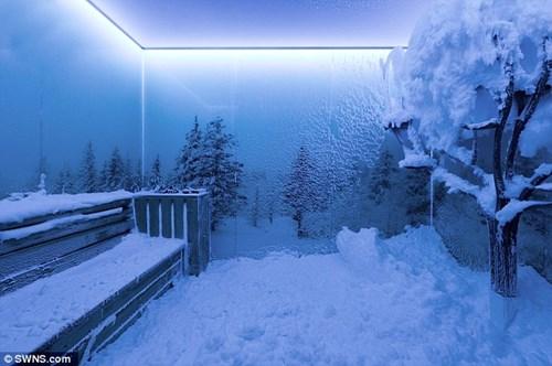 Hình ảnh Đại gia chi 6 tỷ xây phòng băng tuyết trong nhà riêng số 1