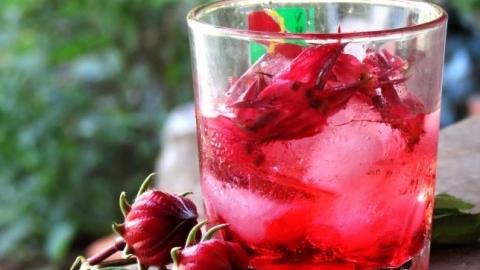Cách ngâm hoa atiso đỏ (hibiscus) thơm ngon 1