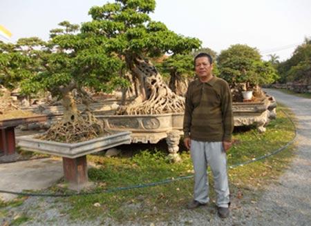 """Đại gia Việt """"săn đón"""" cây cảnh mini giá hàng nghìn đô 4"""