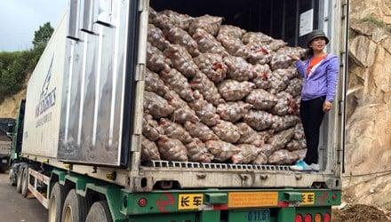 Dân phản đối, chính quyền lùi lệnh cấm khoai tây Trung Quốc 1