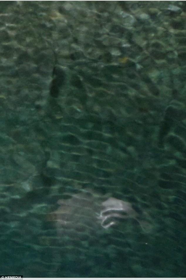 """Phát hiện """"quái vật"""" kì lạ dưới đáy biển 3"""