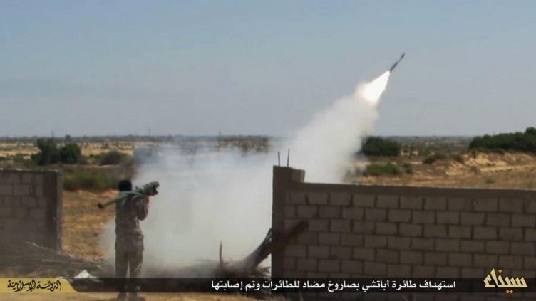 IS tuyên bố bắn hạ máy bay Nga khiến 224 người thiệt mạng 3
