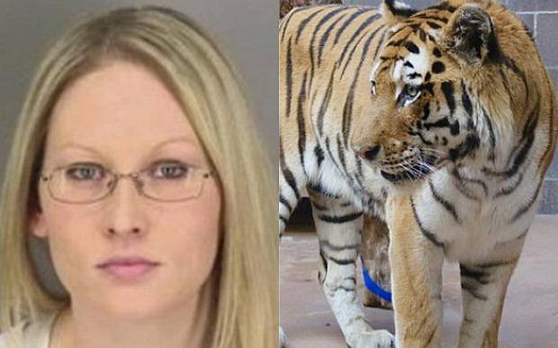 Muốn vuốt ve hổ trong đêm Halloween, người phụ nữ bị cắn nát tay 1