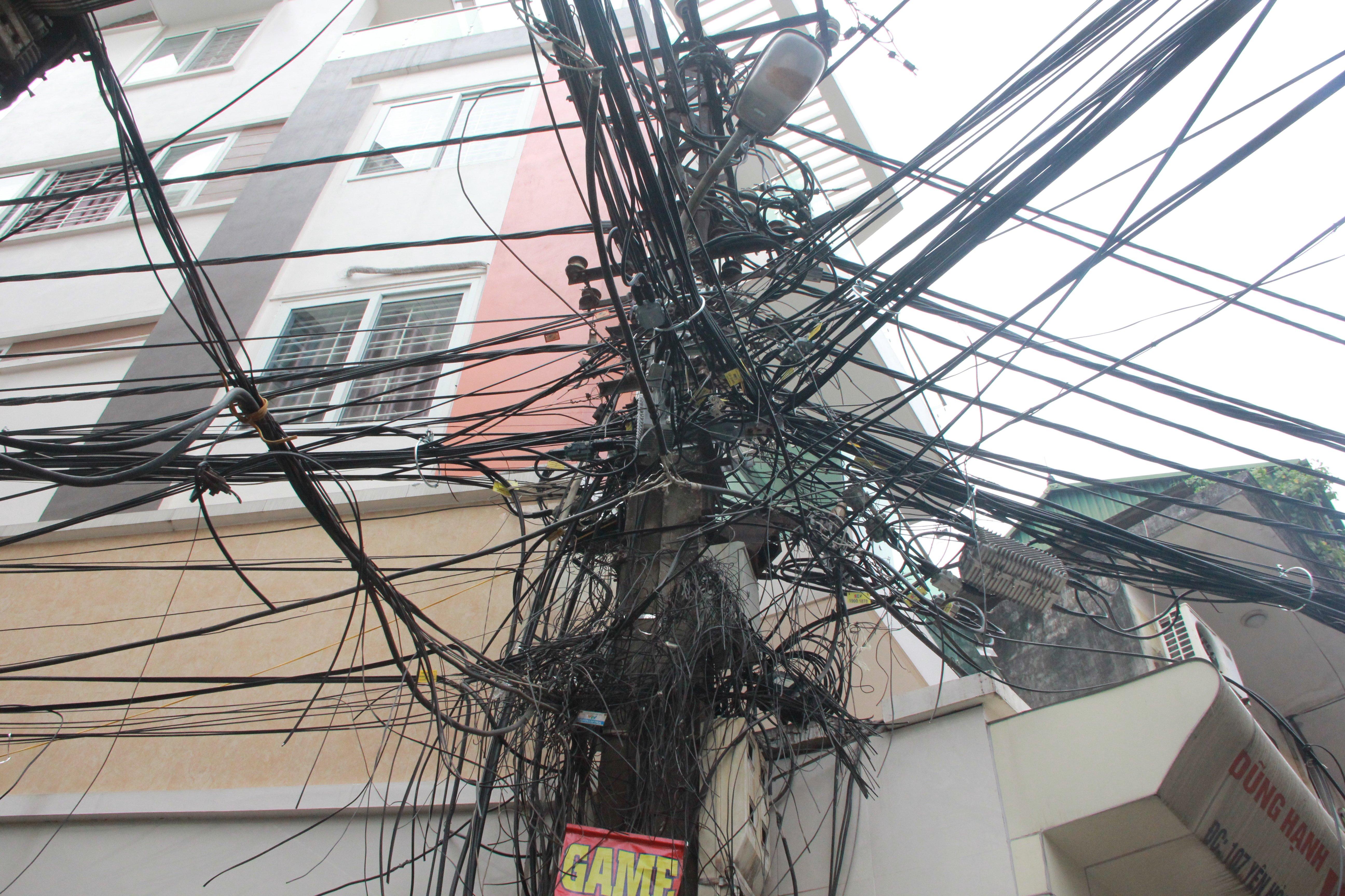 Cận cảnh 'ổ màng nhện' khổng lồ ở Hà Nội 1
