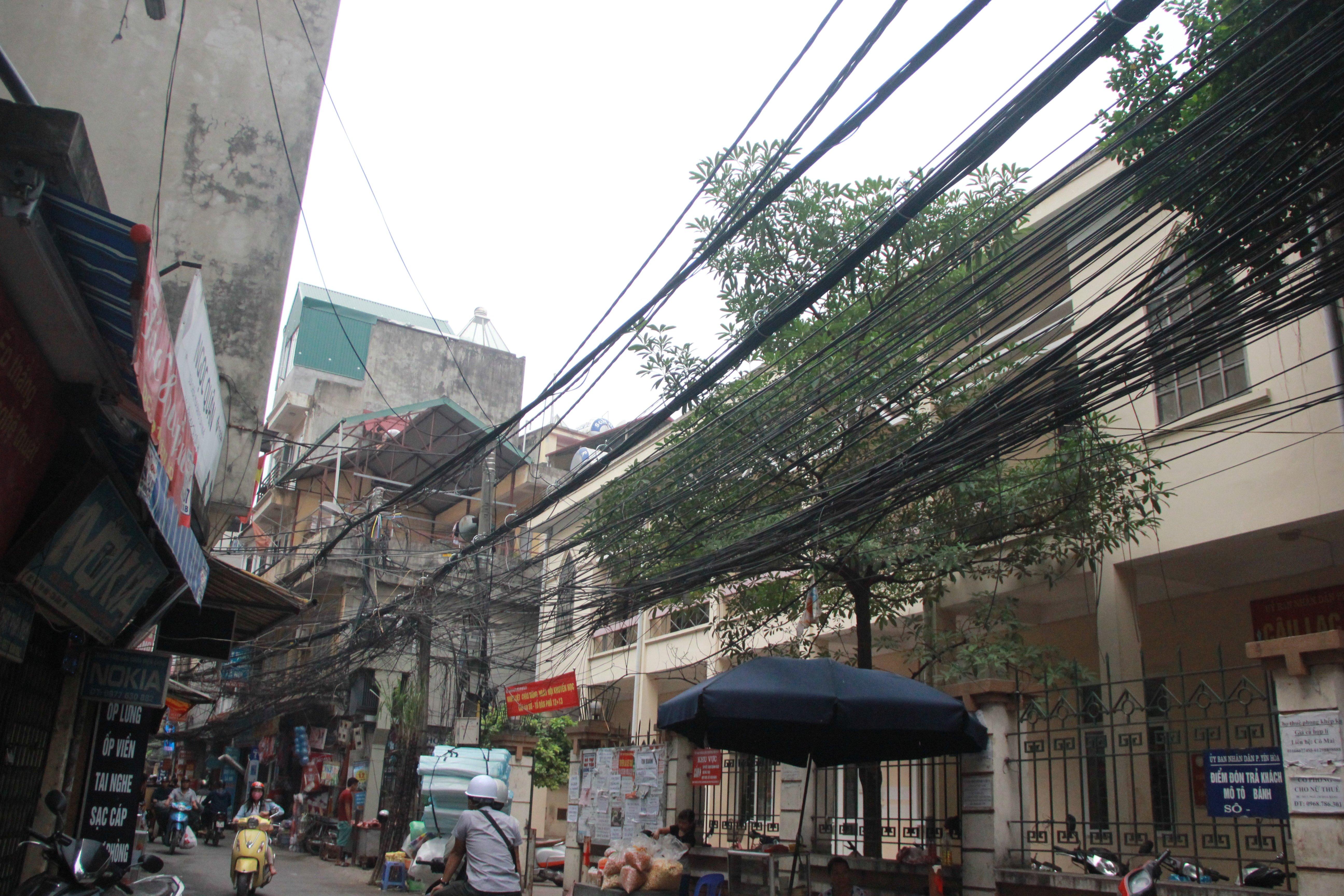 Hình ảnh Cận cảnh dọn ổ mạng nhện khổng lồ ở Hà Nội số 7