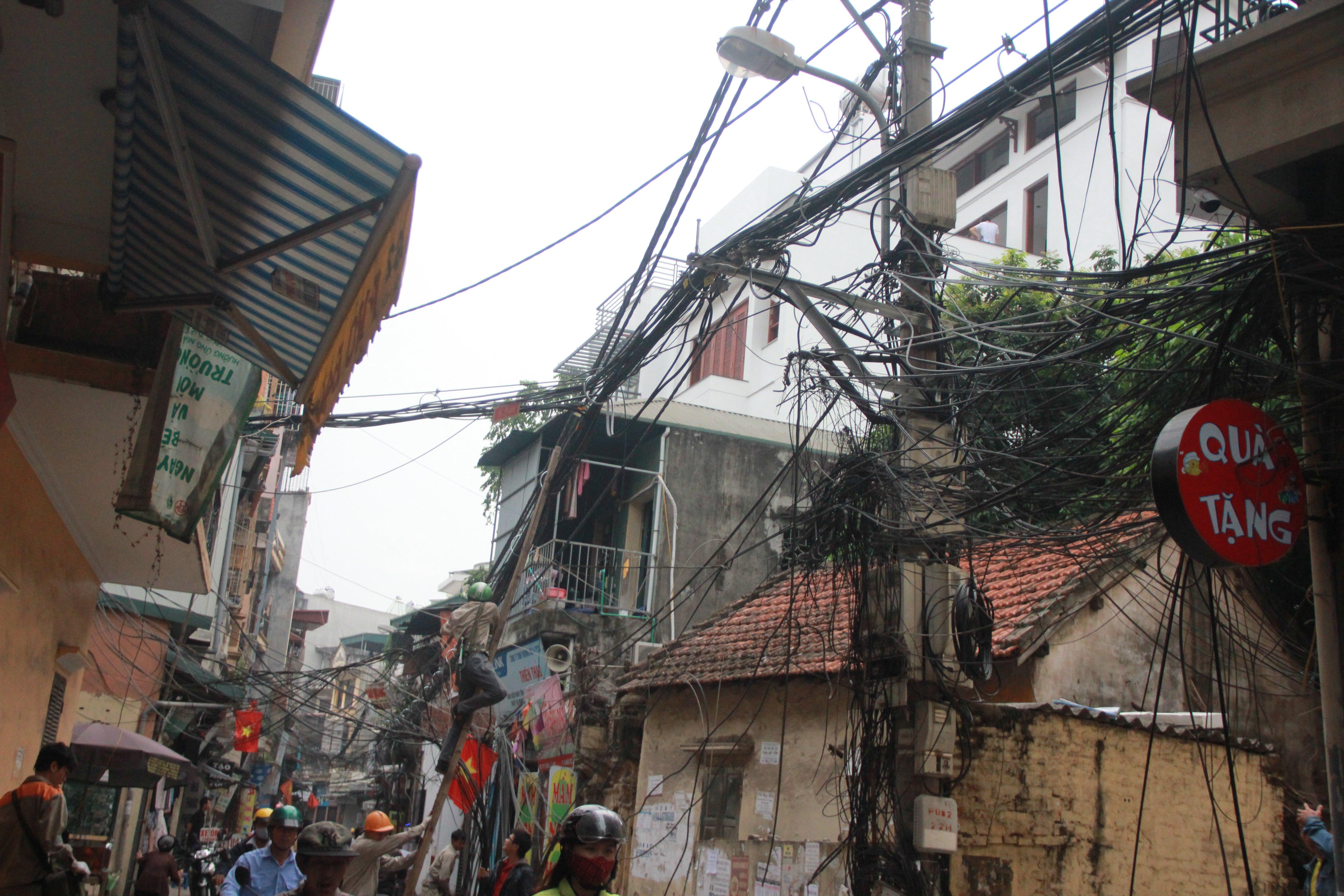 Hình ảnh Cận cảnh dọn ổ mạng nhện khổng lồ ở Hà Nội số 10