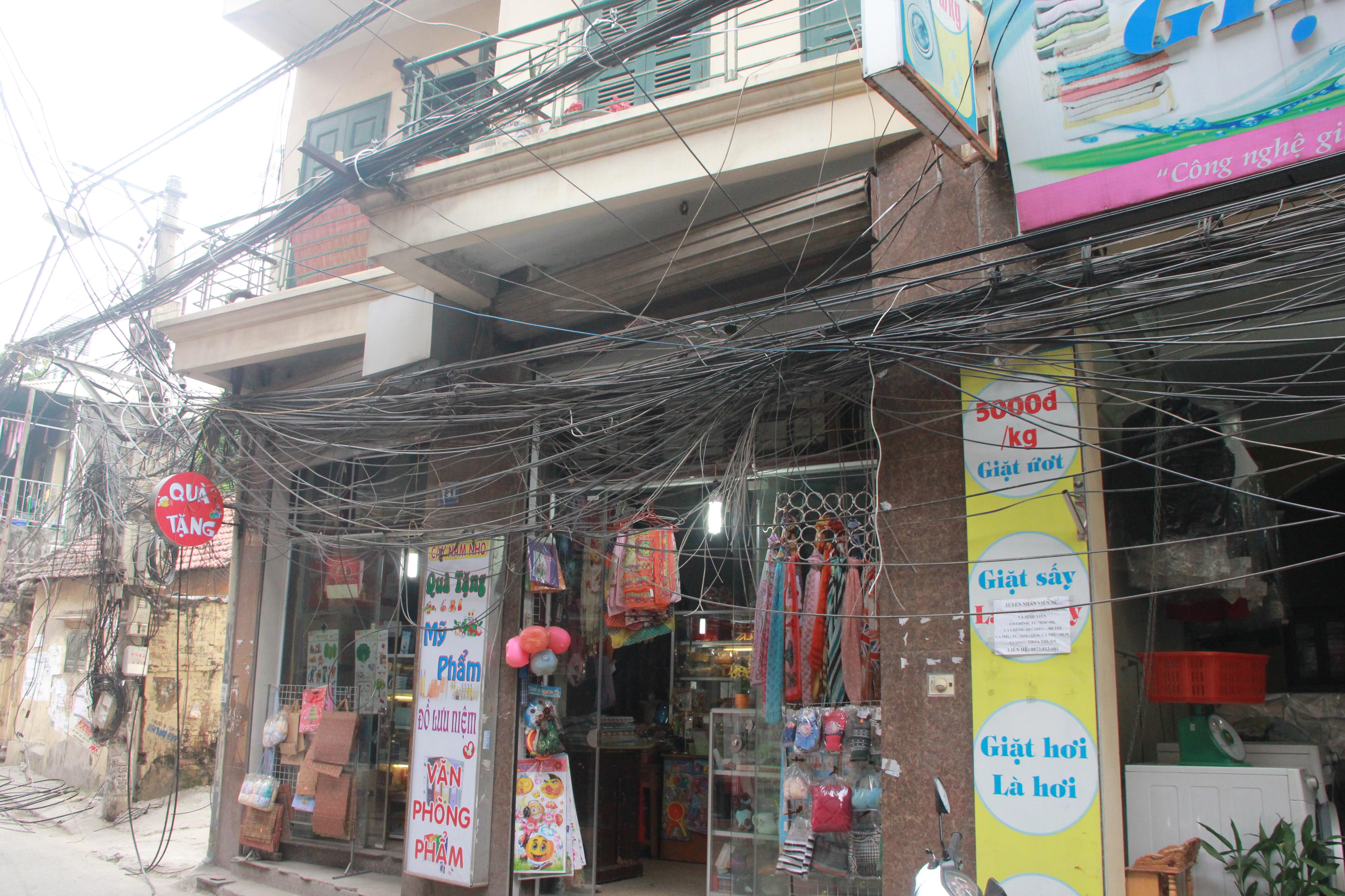 Hình ảnh Cận cảnh dọn ổ mạng nhện khổng lồ ở Hà Nội số 11