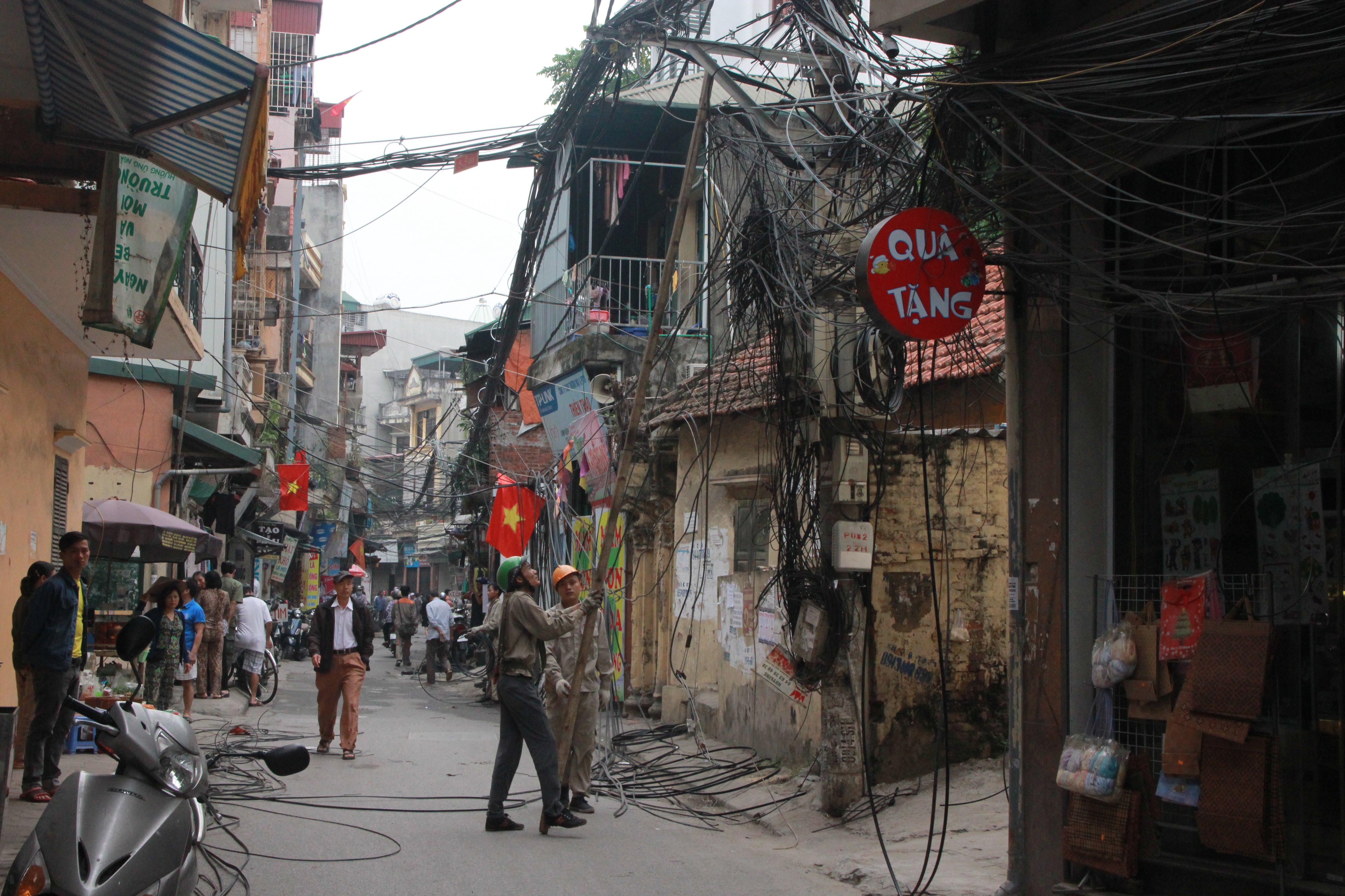 Cận cảnh 'ổ màng nhện' khổng lồ ở Hà Nội 7