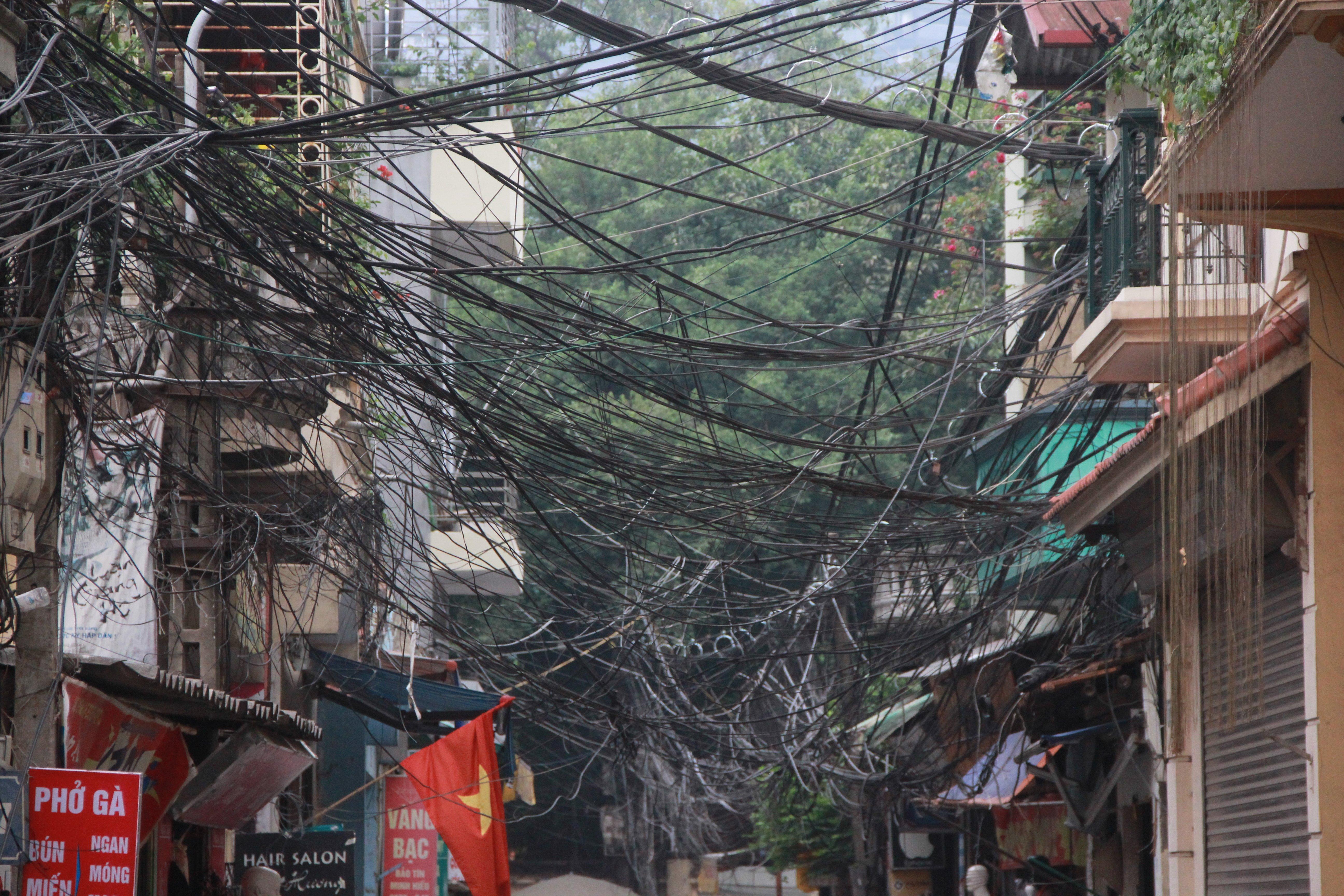 Hình ảnh Cận cảnh dọn ổ mạng nhện khổng lồ ở Hà Nội số 13