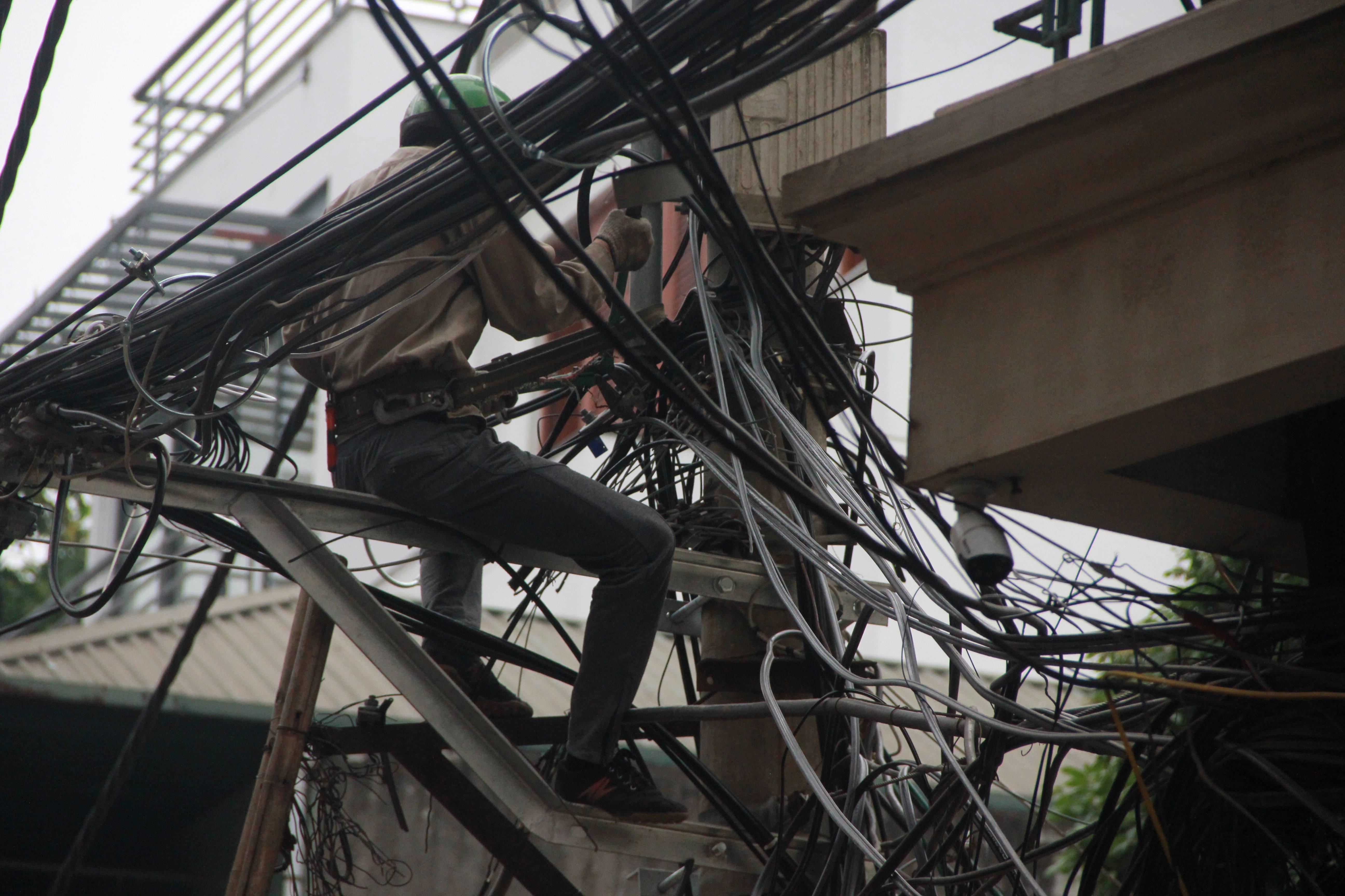 Hình ảnh Cận cảnh dọn ổ mạng nhện khổng lồ ở Hà Nội số 3