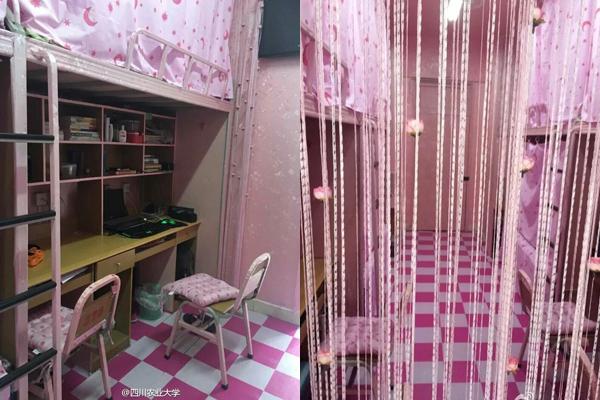 Căn phòng màu hồng của nam sinh Trung Quốc gây nhiều tranh cãi 2