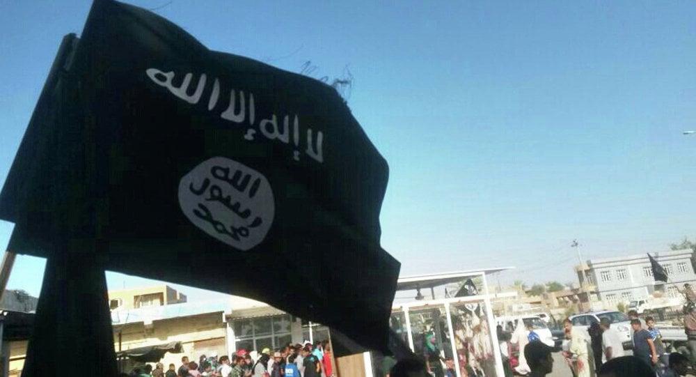 """Hình ảnh Học giả Mỹ: """"Sự can thiệp của phương Tây khiến IS bùng nổ"""" số 1"""