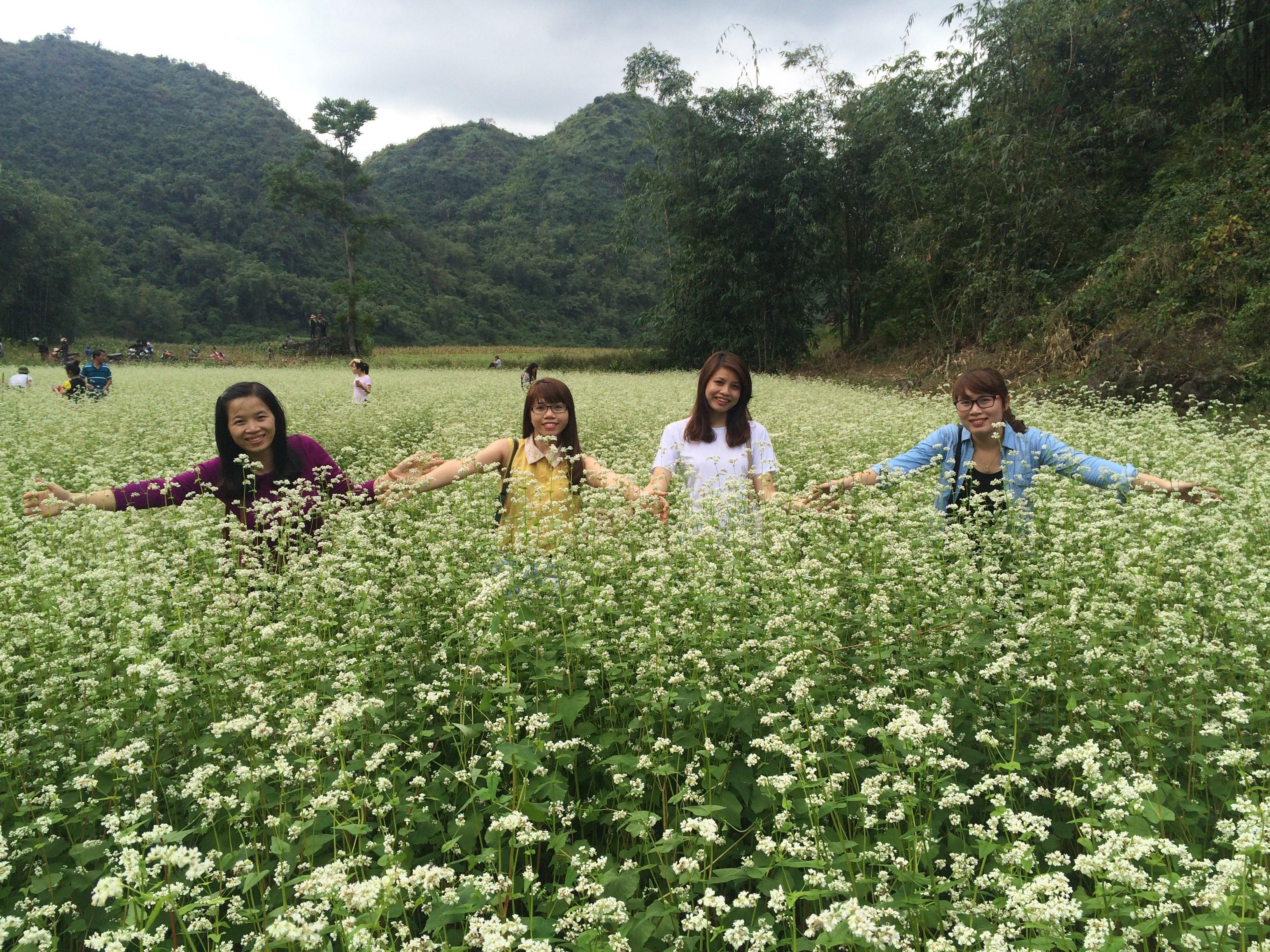 Chiêm ngưỡng hoa tam giác mạch trắng ở Lạng Sơn 9