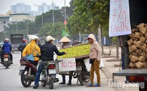 Hình thành phố hoa quả giá rẻ nhất Hà Nội 2
