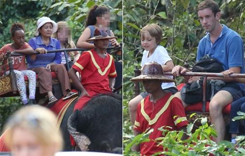 Minh tinh Angelina Jolie bị chỉ trích vì để con cưỡi voi 1
