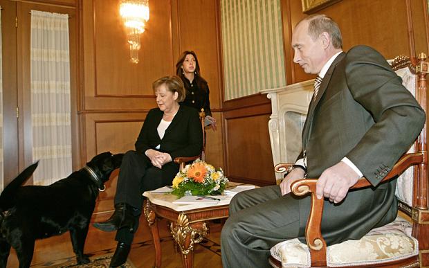 Ông Putin lên tiếng về vụ thả chó 'dọa' bà Merkel 2