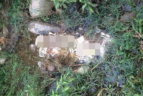 Phát hiện bộ xương người nằm lộ thiên gần bờ suối 1