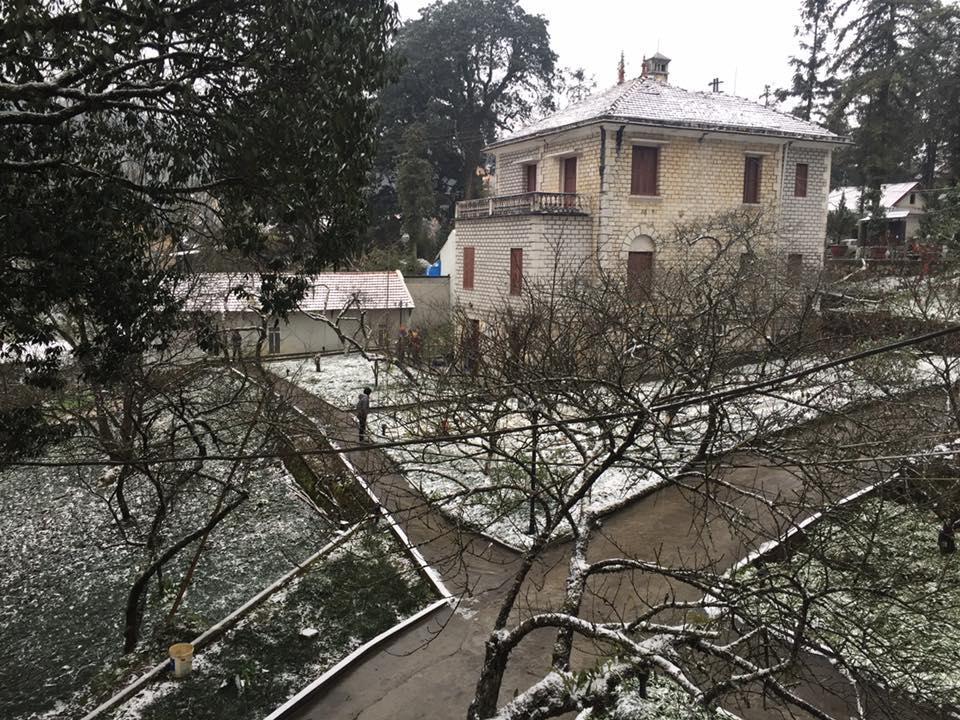 Cận cảnh tuyết rơi tại Sa Pa 1