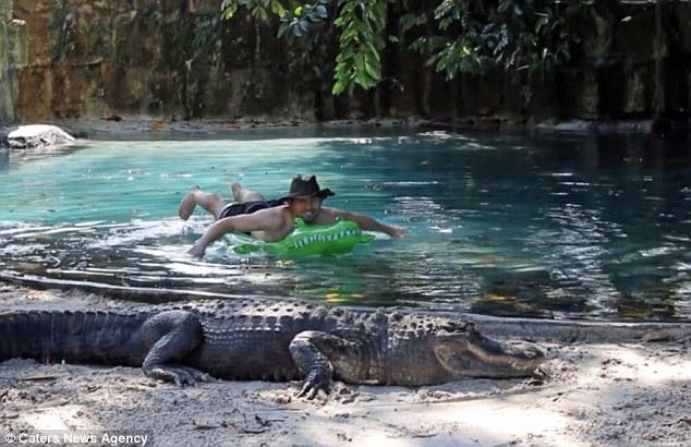 Video: Kinh hãi người đàn ông bơi qua đầm cá sấu