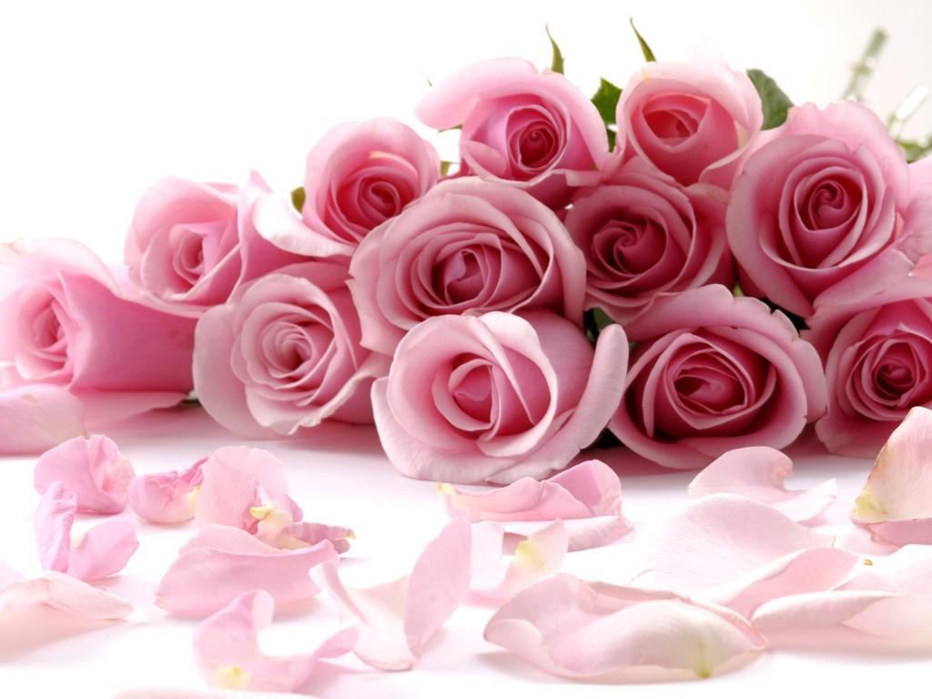 Loại hoa nên có trên bàn thờ ngày Tết để rước tài lộc 3