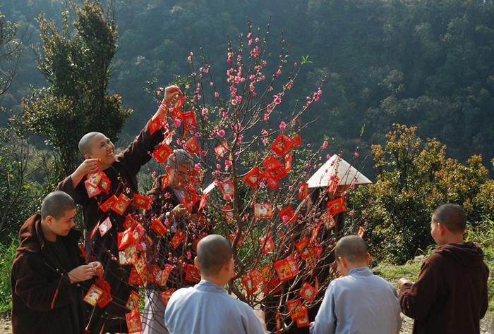 Посещение пагод, обрывание весенней ветки – красивые черты вьетнамской культуры