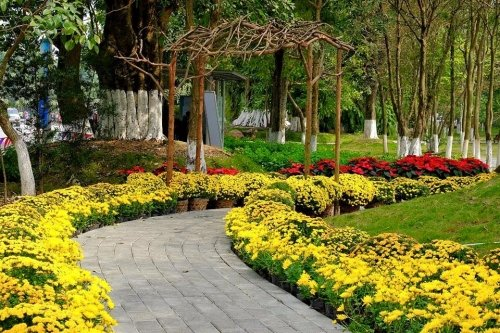 Hàng vạn người háo hức tham gia lễ hội hoa Xuân 1