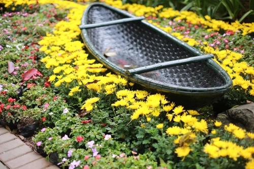 Hàng vạn người háo hức tham gia lễ hội hoa Xuân 12
