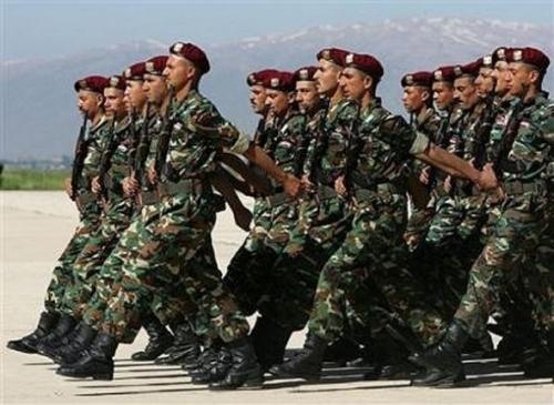 25 binh sỹ chính phủ chết vì cúm lợn, đại dịch bùng phát ở Syria 2