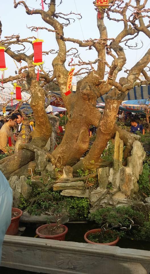 Hình ảnh Chợ Viềng Nam Định chật cứng người mua may, bán rủi số 7