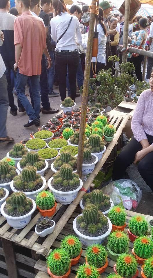 Hình ảnh Chợ Viềng Nam Định chật cứng người mua may, bán rủi số 4
