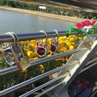 Xuất hiện hàng loạt khóa tình yêu trên cầu đi bộ 50 tỷ ở Cần Thơ 1