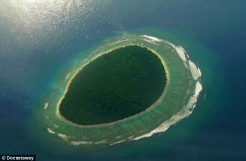 Nữ sinh một mình sống trên đảo hoang 6