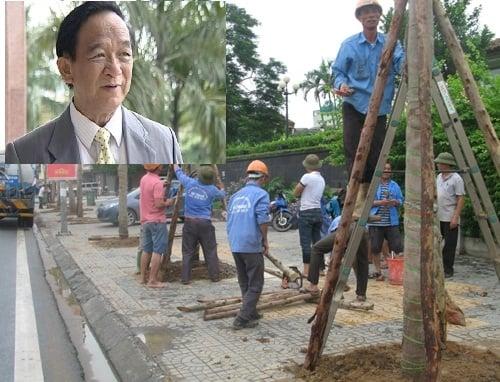 Hình ảnh GS Nguyễn Lân Dũng: Đi nước ngoài học trồng cây người ta cười cho số 1