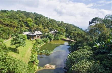 Resort 4 sao xây dựng trái phép tại Vườn Quốc gia Ba Vì 1
