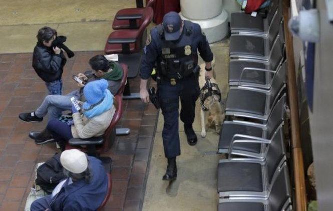 Mỹ tăng cường an ninh sau khủng bố Brussels 1